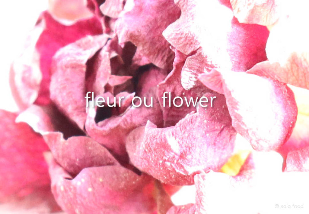 fleur #1