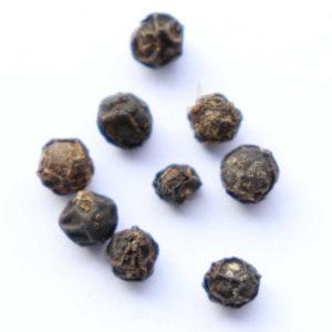 Le poivre - Penja - Cameroun