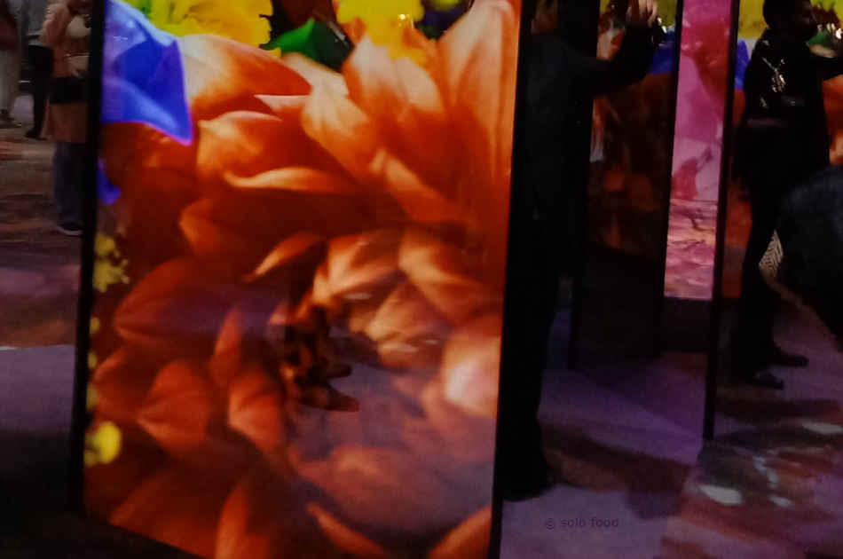florae - exposition Van Cleef & Arpels